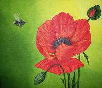 The red poppy Fantasy