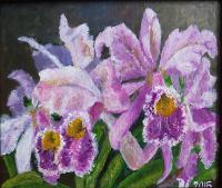 Nina Belova Orchid color Flowers